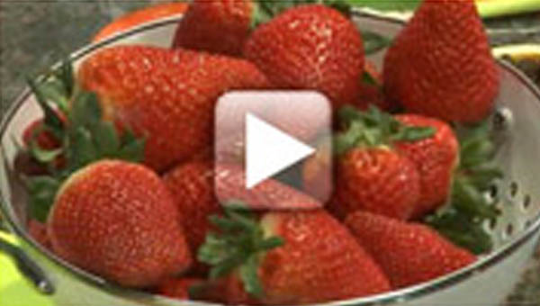 California Giant Berry Farms Strawberries video screenshot