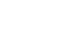 The Buzz Trade Newsletter logo