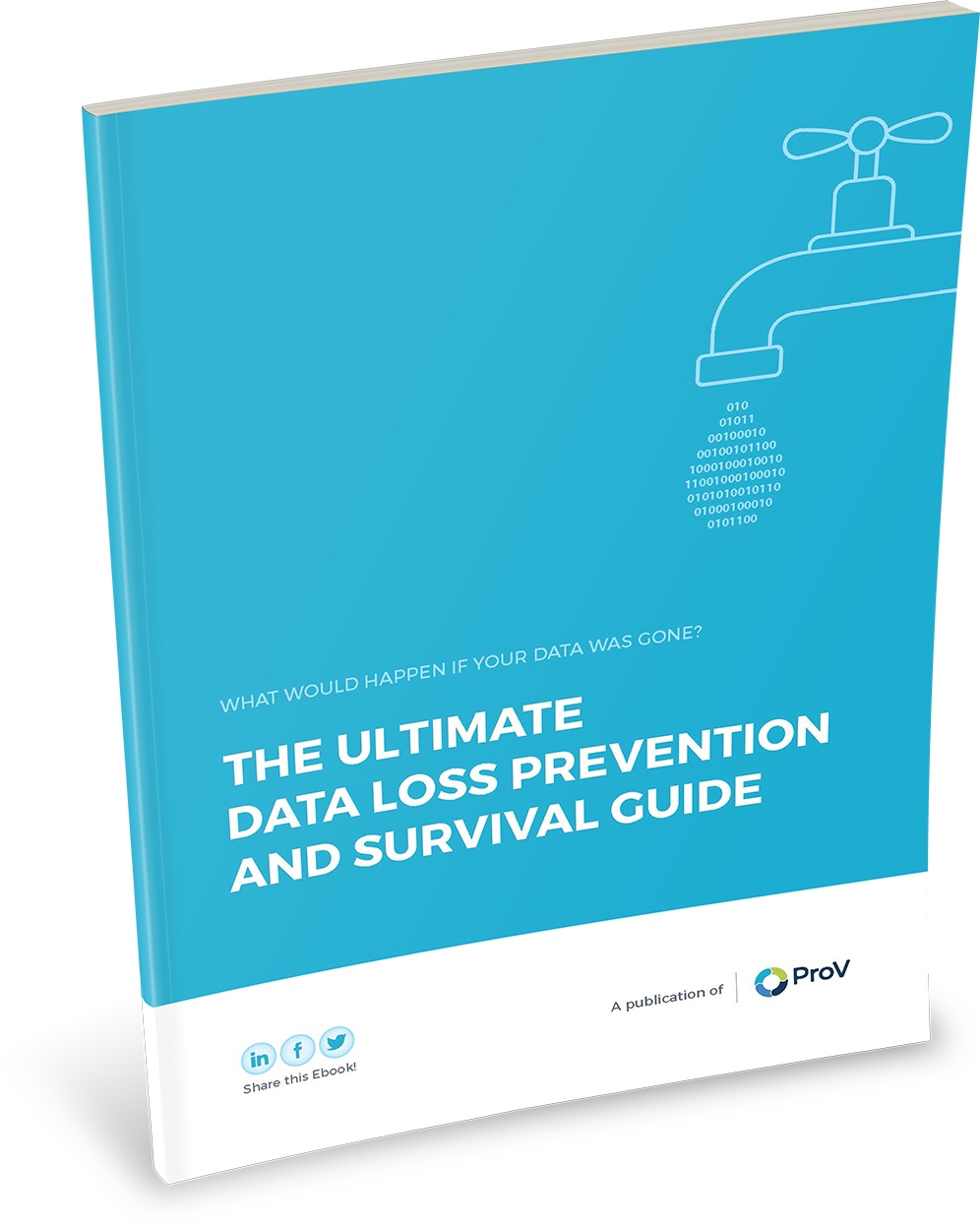 the-ultimate-data-loss-prevention-and-survival-guide