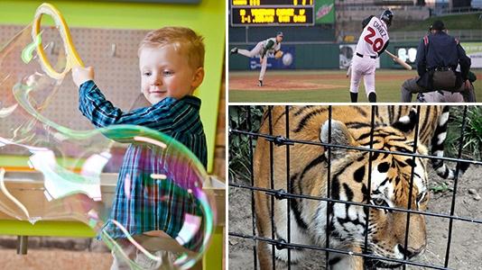 Impression 5 Science Center, Lansing Lugnuts Baseball, Potter Park Zoo