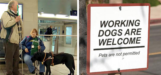 Working Dogs are Welcome. Pets not permitted.