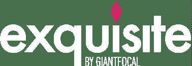 logo_colored_white