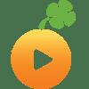 HubSpot Lucky Orange Integration