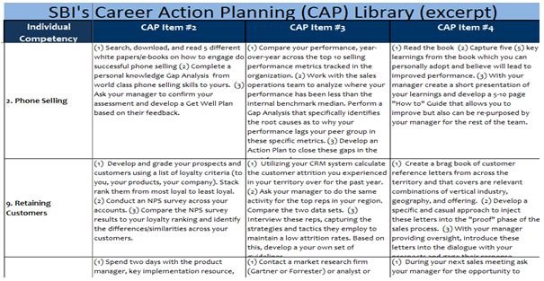 career action plan template – Sales Action Plan Template