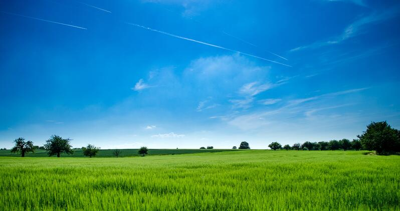 6 Amazing Benefits A Sale & Leaseback Can Have For Your Farm
