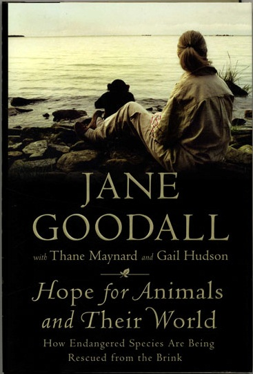 through a window jane goodall essays By jane goodall parts of an essay introduction 1 hook- gets the readers  attention 2 intro to the topic- addresses issue/problem, two sides, topic and  arguments.