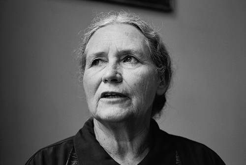 my father doris lessing [my father and mother] = alfred & emily, chinesische übersetzung, nanhai chu ban, haikou 2013,  doris lessing, clancy sigal and ‹roman à clef.