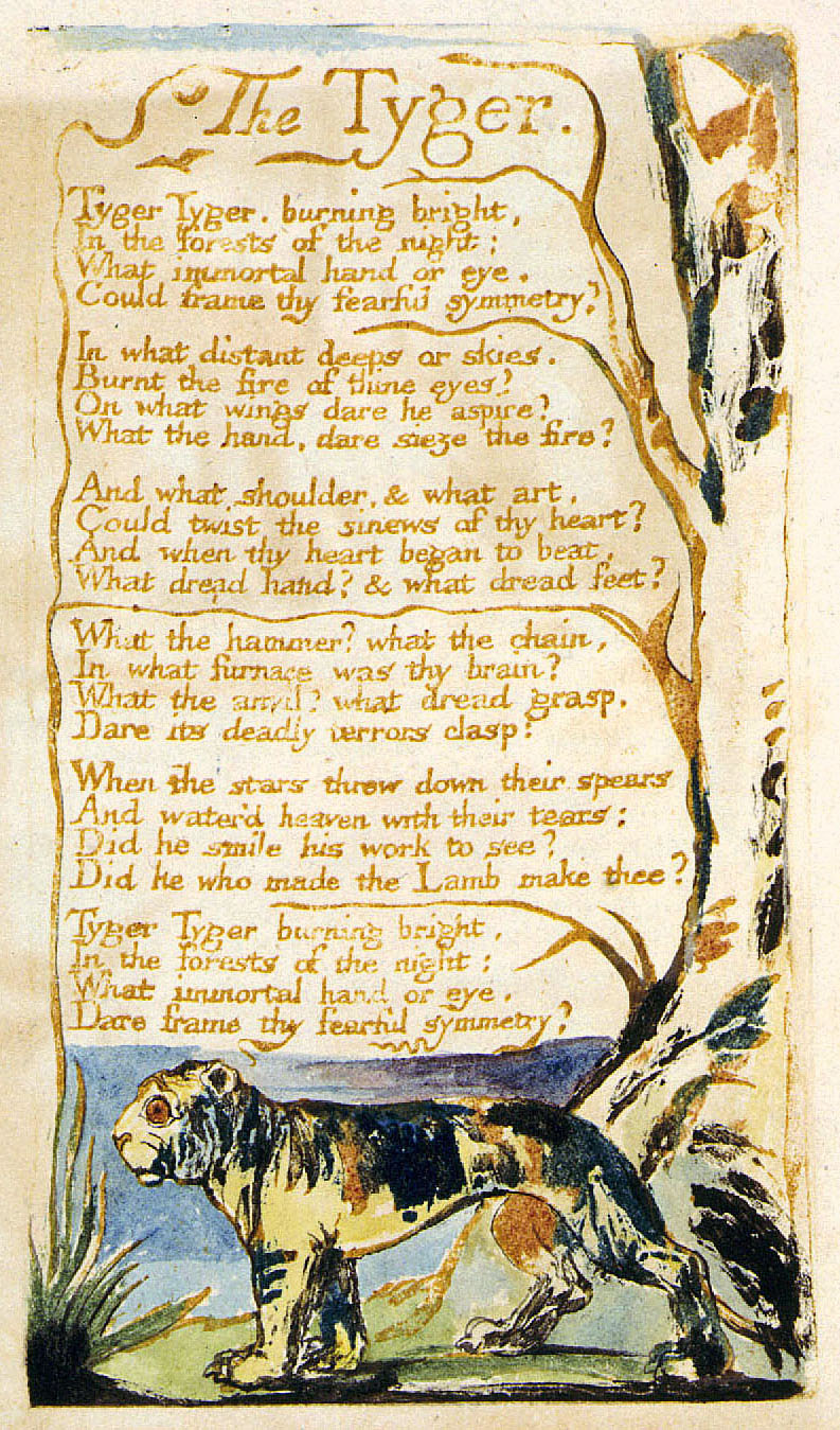 "the literary devices in the tyger a poem by william blake This analysis of ""the tyger"" by william blake looks at poetic devices this includes some tips on how to do a better job capturing the nuances through annotating the text begin your analysis of ""the tyger"" by william blake by printing out the poem and annotating it."