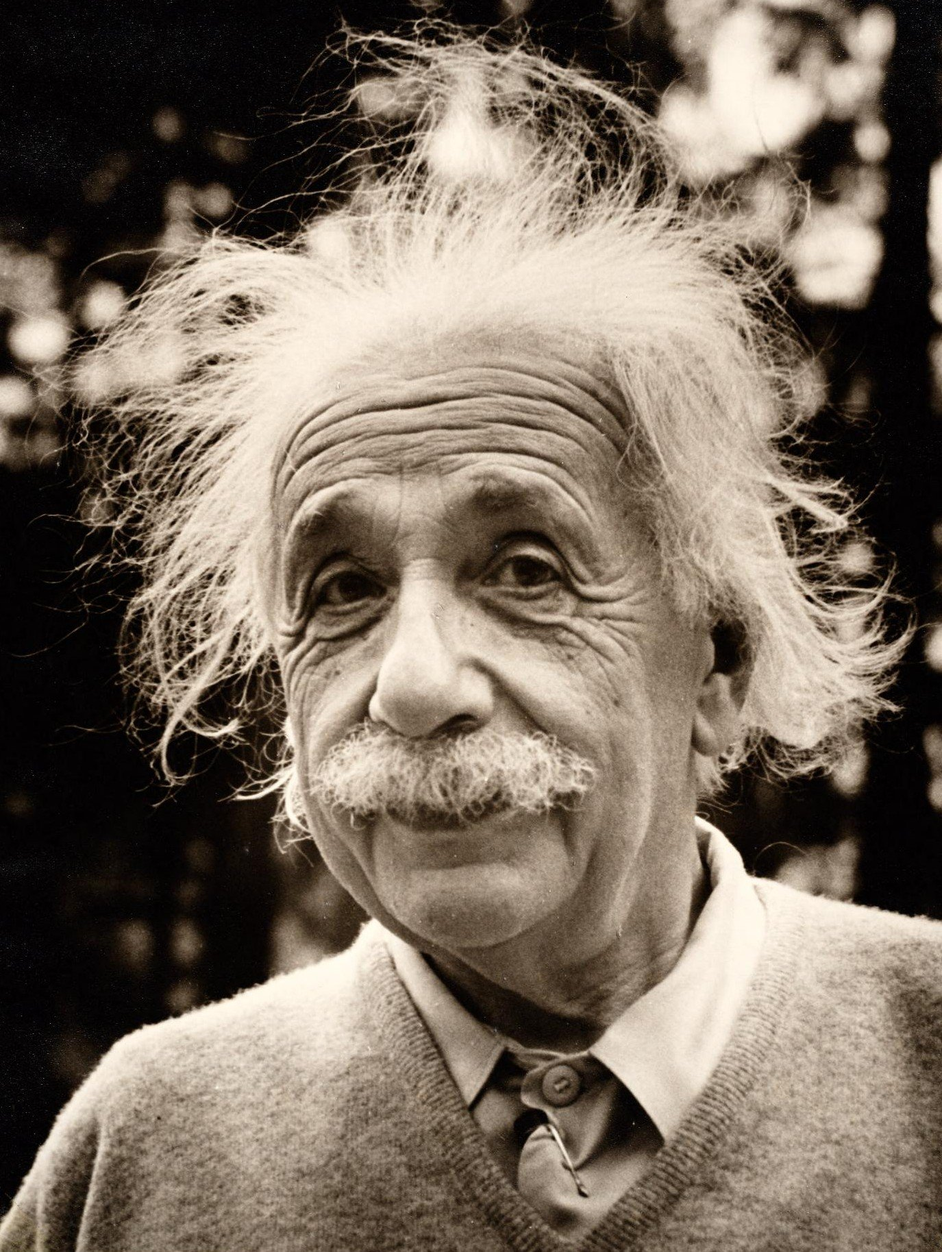 Ten Facts You Should Know about Albert Einstein