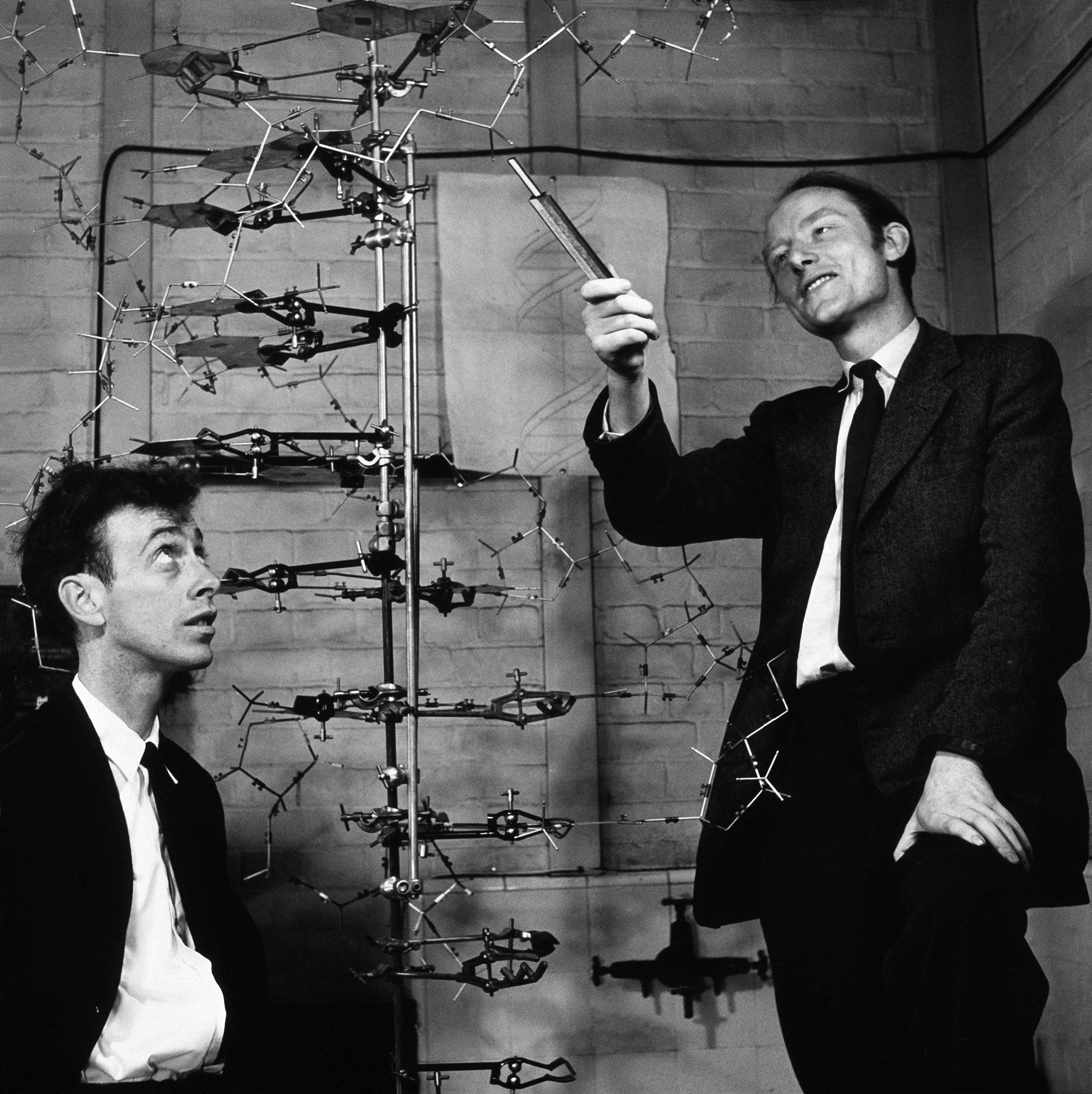 J.D. Watson e F.H.C. Crick
