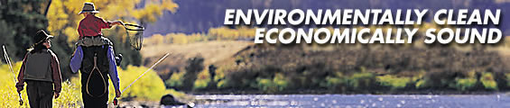 Environmentally Clean Economically Sound