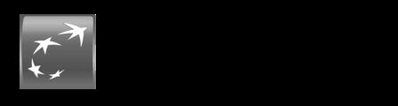 bnp-asset