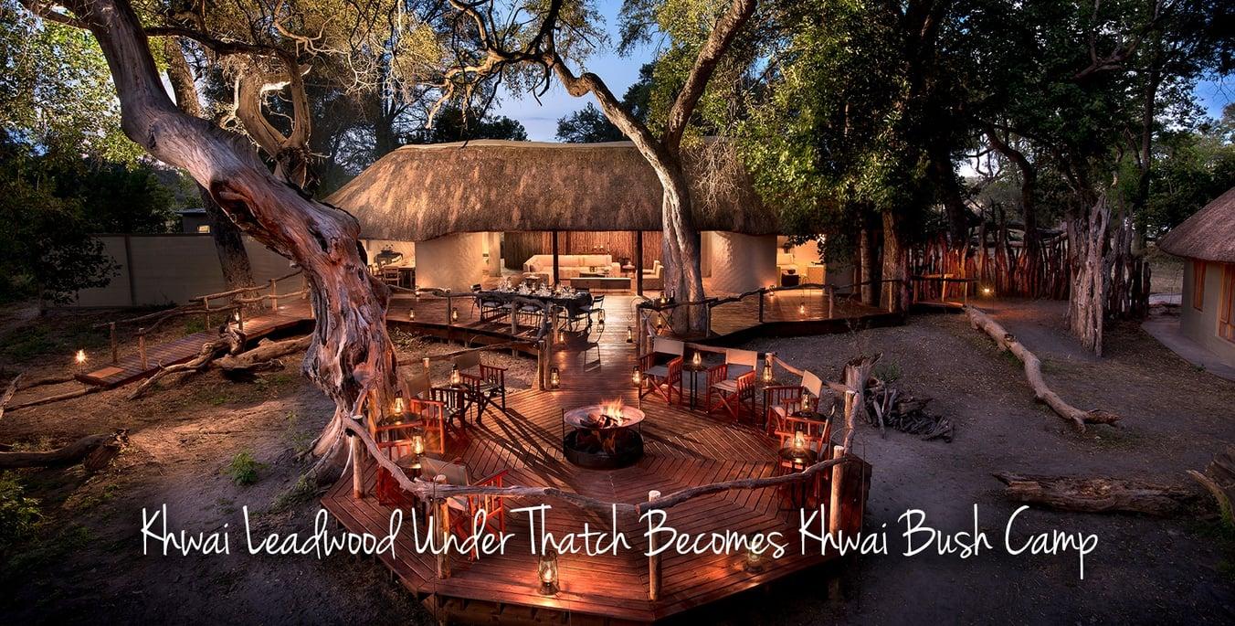 African-Bush-Camps_Khwai-Bush-Camp_blog-main-image