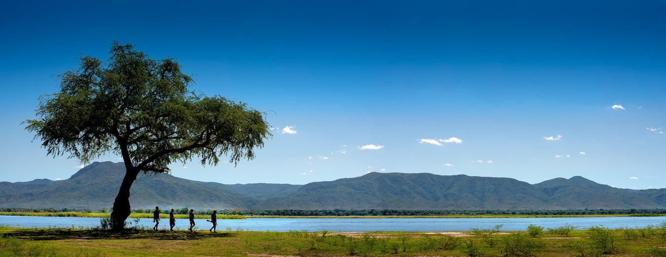 Walk_Pano1-NYAMATUSI-AFRICAN-BUSH-CAMPS
