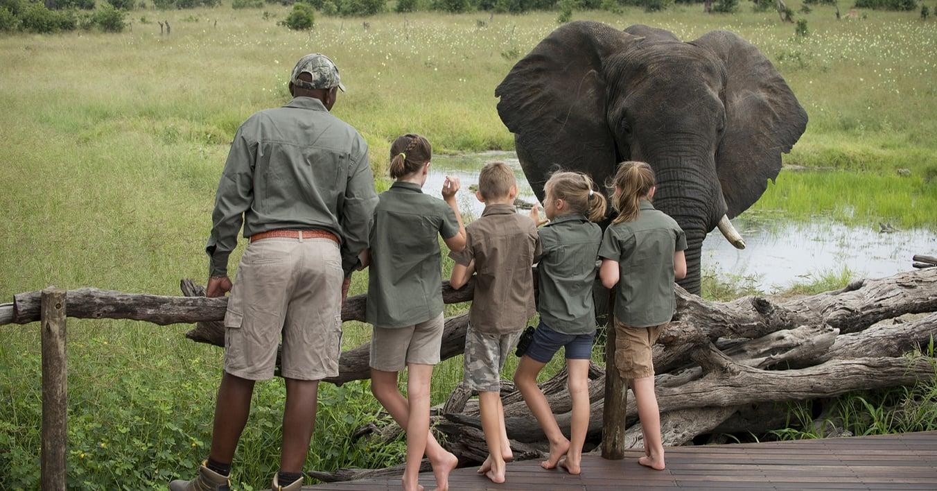Somalisa-Acacia-Hwange-National-Park-Zimbabwe-Luxury-Safari-Camp-African-Bush-Camps-Children-close-encounters-with-elephants-(15)