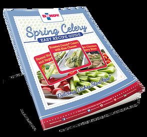 Spring Celery Guide