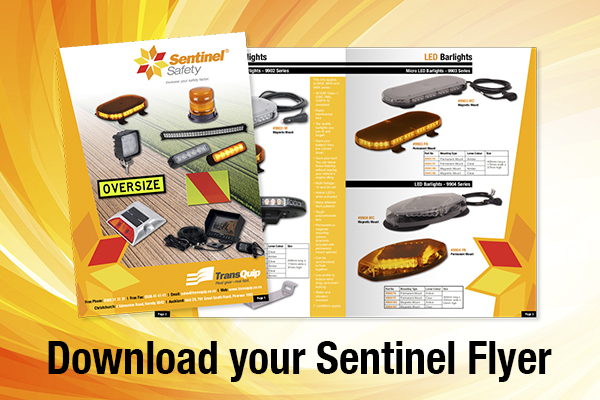 Sentinel Safety Flyer is here...