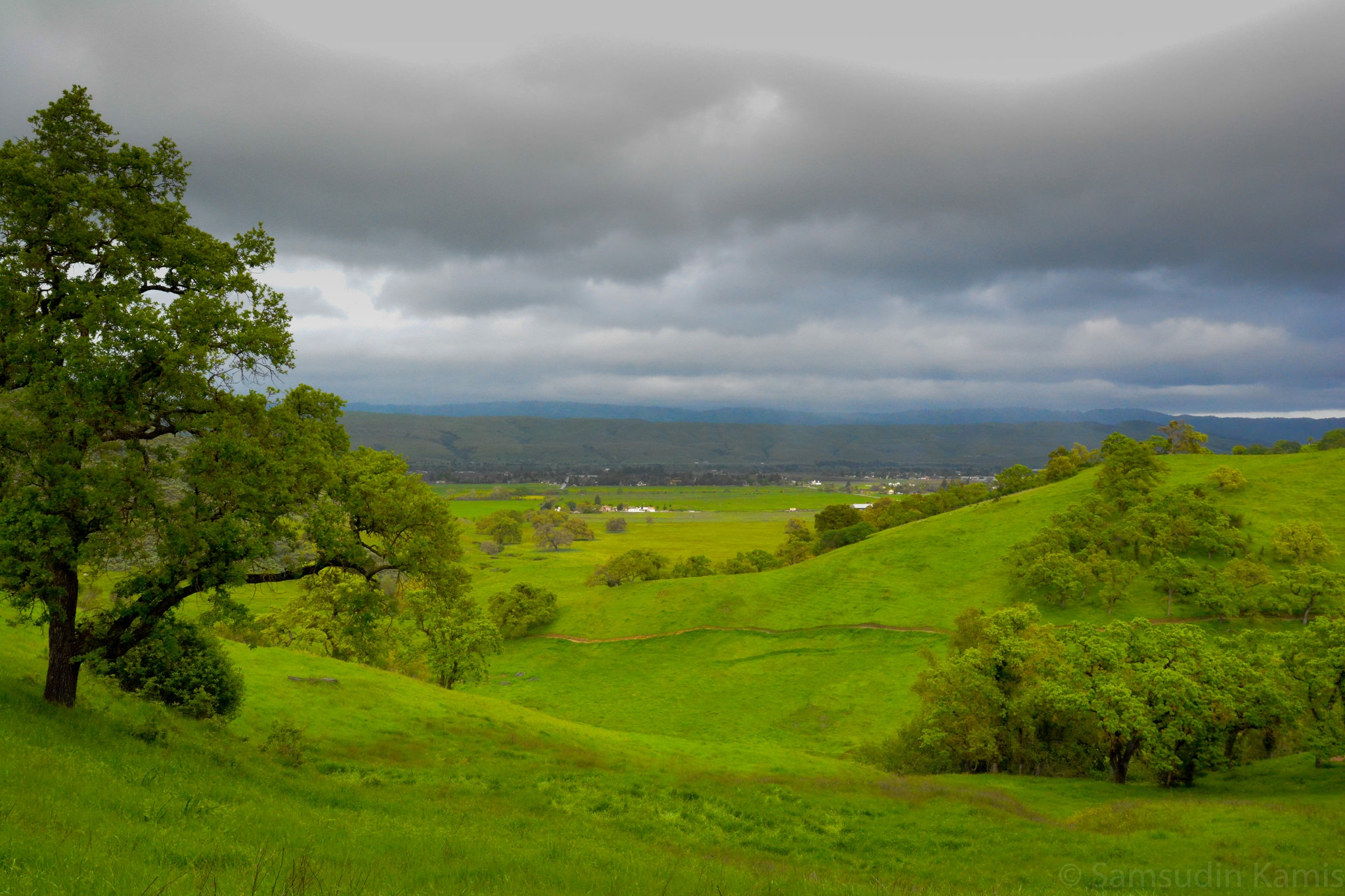 coyote-valley-open-space-preserve-winter-hiking-tips.jpg