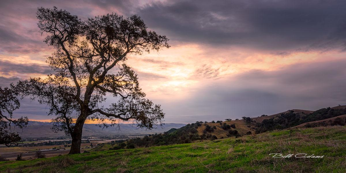 Coyote Valley Sunset - BA