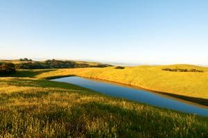 Diablo Foothills Pond