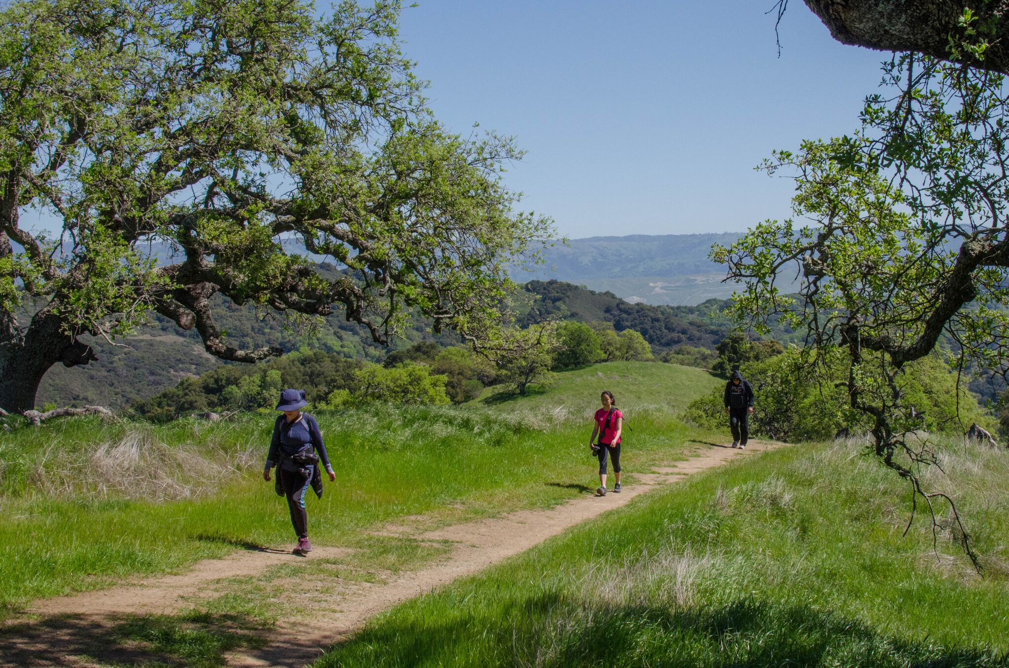 Mayfair-Trail_Rancho-Canada-del-Oro-Open-Space-Preserve_Cassie-Kifer-39_preview