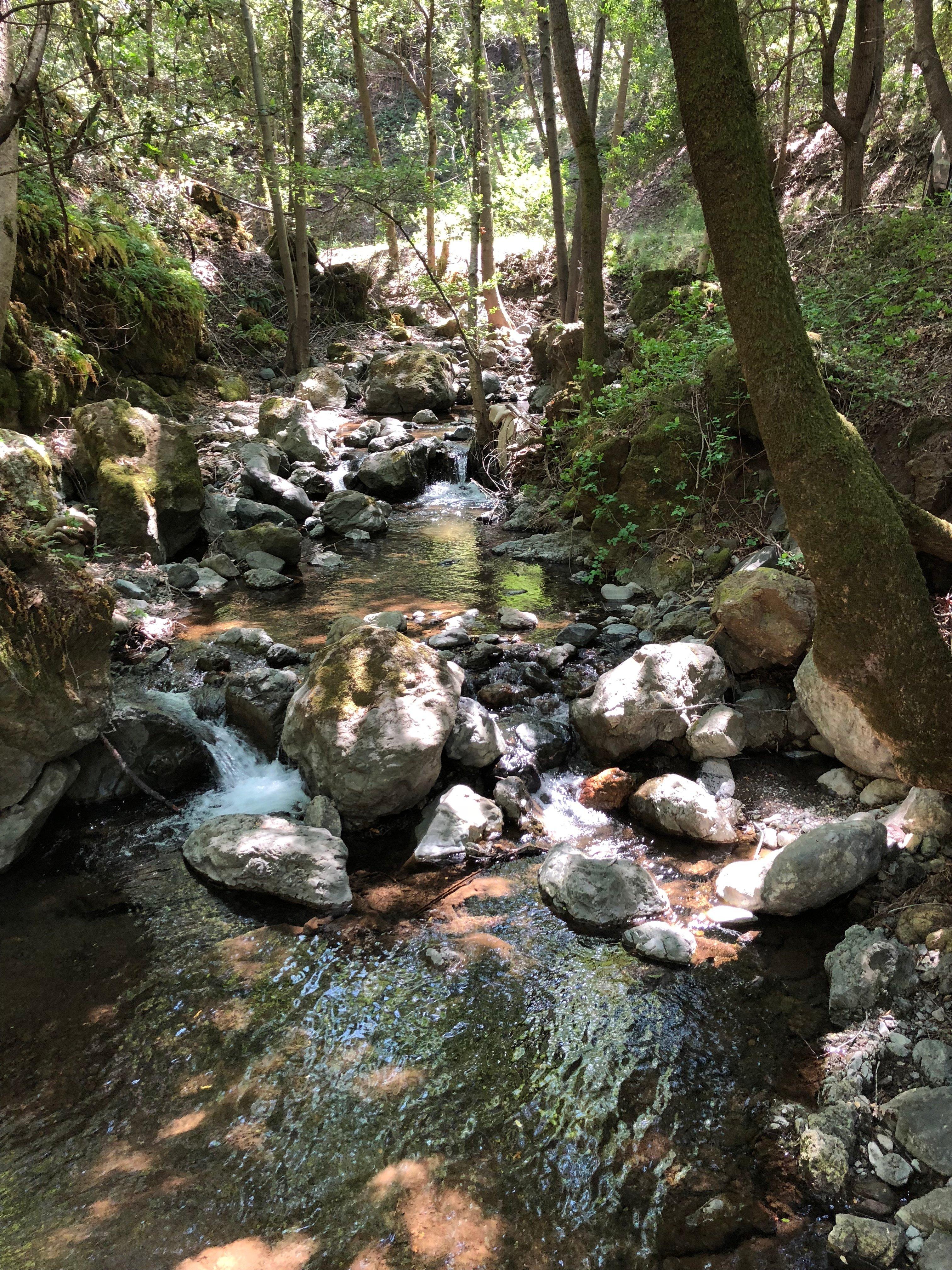 POST_Barrett Creek (4)