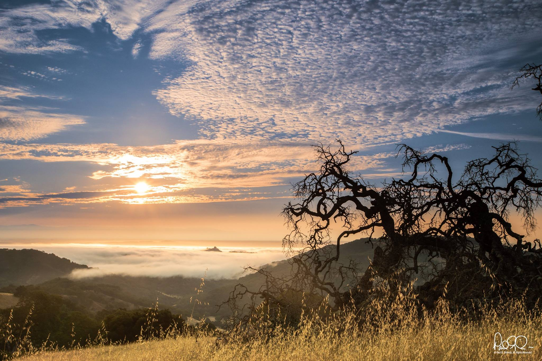 Paul Dileanis - Sunrise from the Mayfair Ranch Trail - Rancho Canada del Oro Open Space Preserve