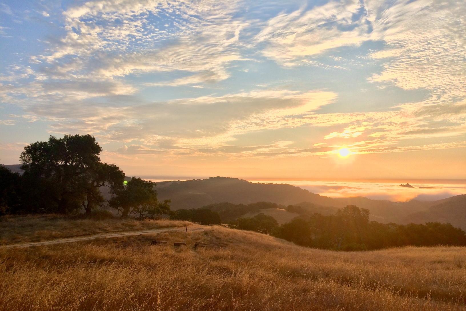 RCAN  - Sunrise - D. Mauk -Jul-29-2018