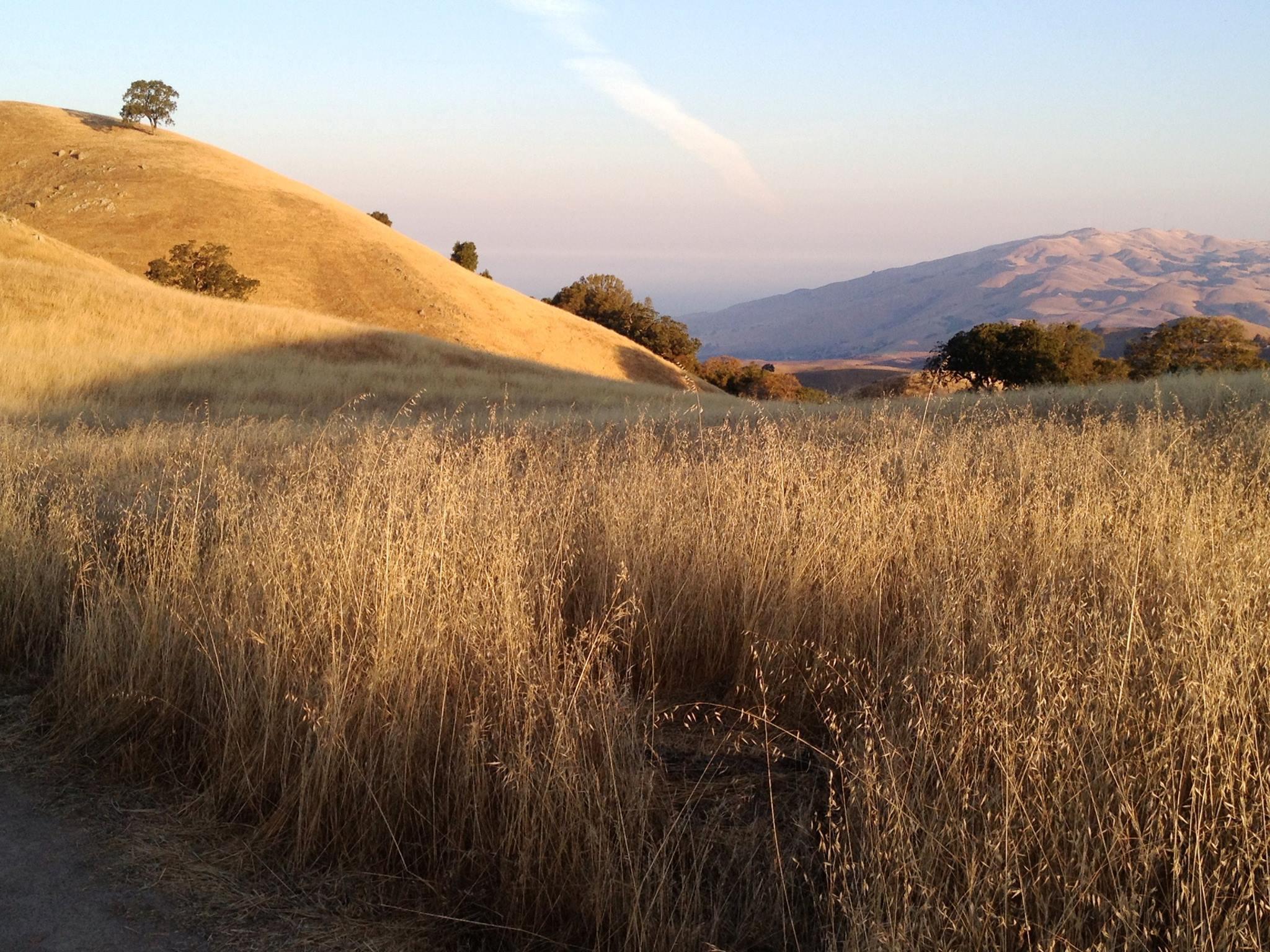 Sierra Vista - Aquila Trail - AL - 10-01-2014