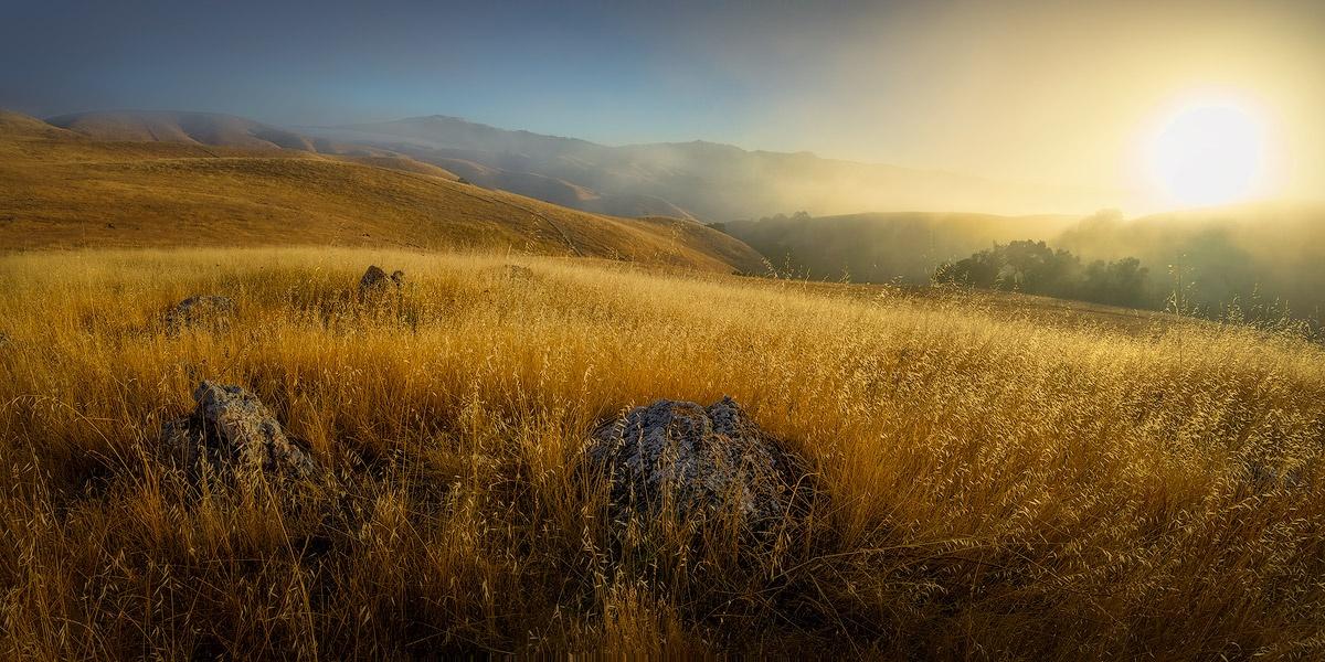 WBA_Coyote-Ridge-OSP_20180715_72017_CR-foggy-sunrise-JPG1200