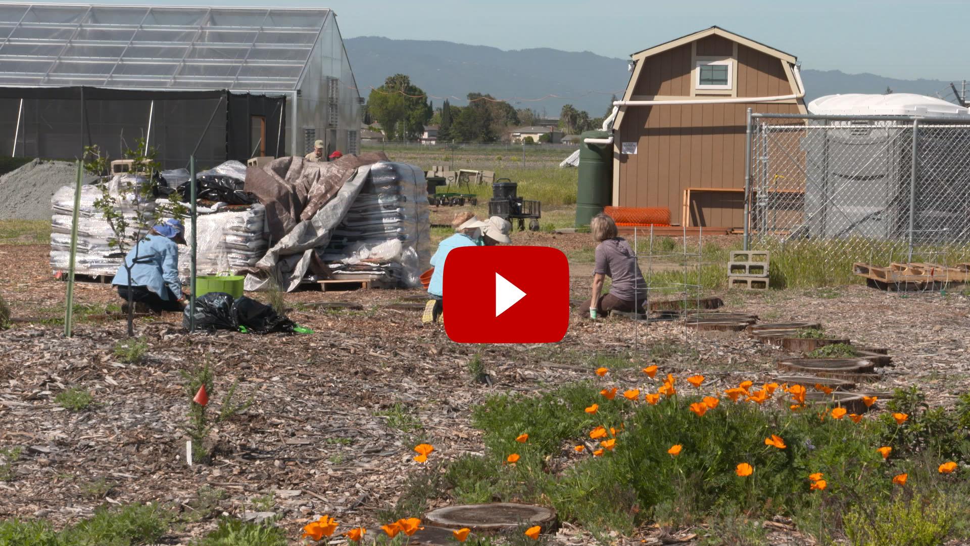 Master Gardener Teaser.jpg