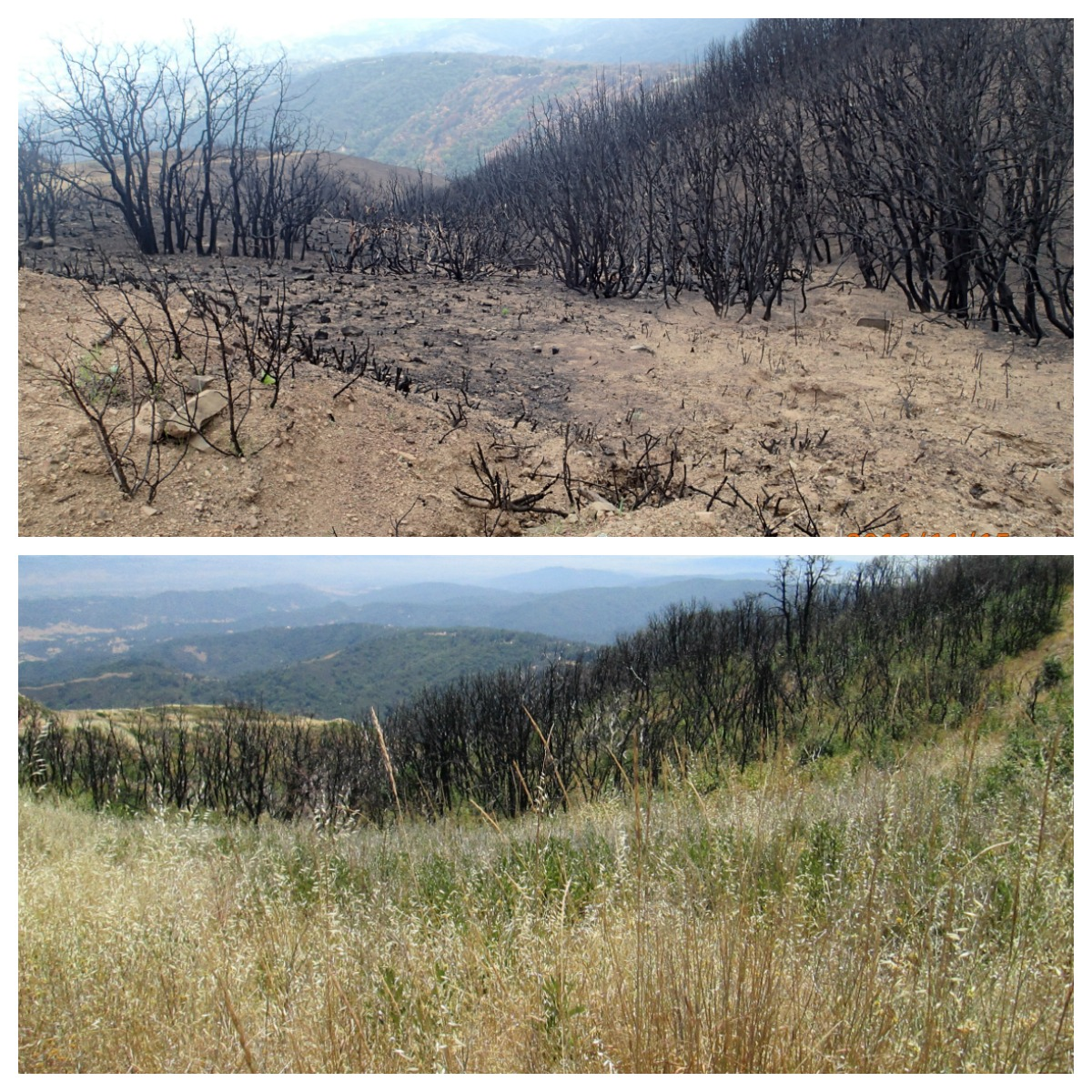 loma fire - station 6 before and after
