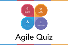 How agile is your organisation?