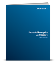 Successful Enterprise Architecture