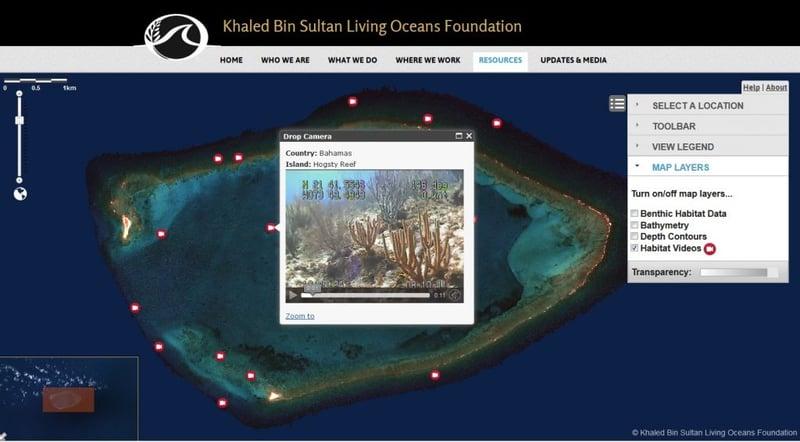 Interactive Coral Reef Atlas