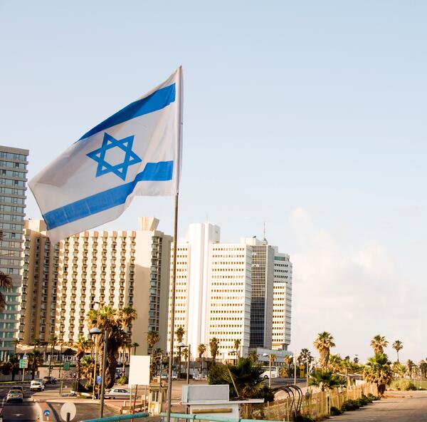 Tel Aviv Conference on Having Families Through Surrogacy