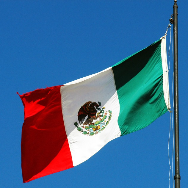 Surrogacy Limitations in Mexico