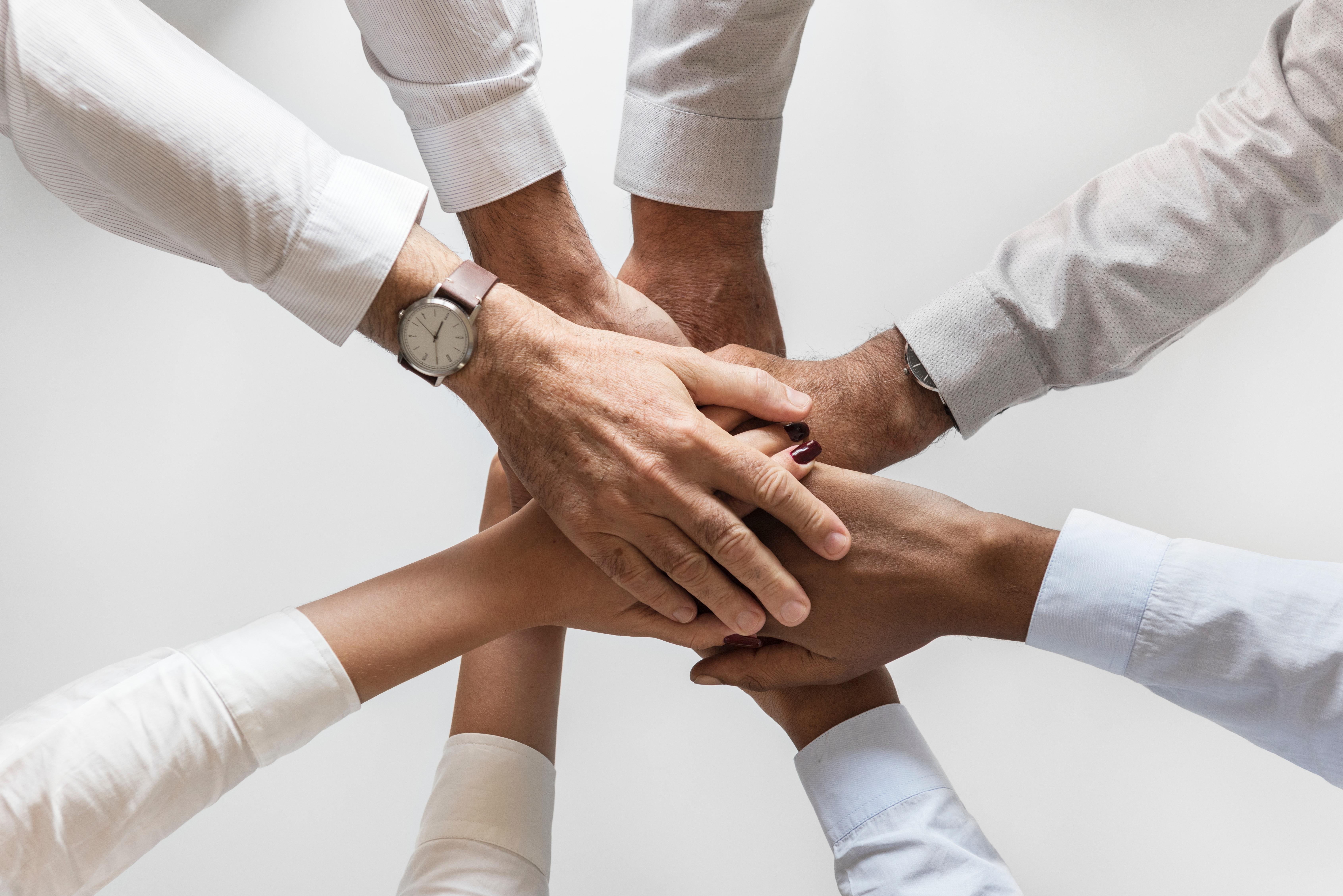 6 Dicas para criar uma equipa de sucesso