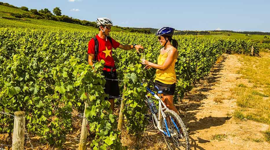 Cycle Northern Croatia & Slovenia