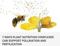 Pollination blog image.jpg