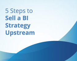 Image of a book for 5 Steps to Sell a BI Strategy Upstream