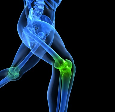 Knee-ACL-iStock_000012214665_XXXLarge-resized-384x375