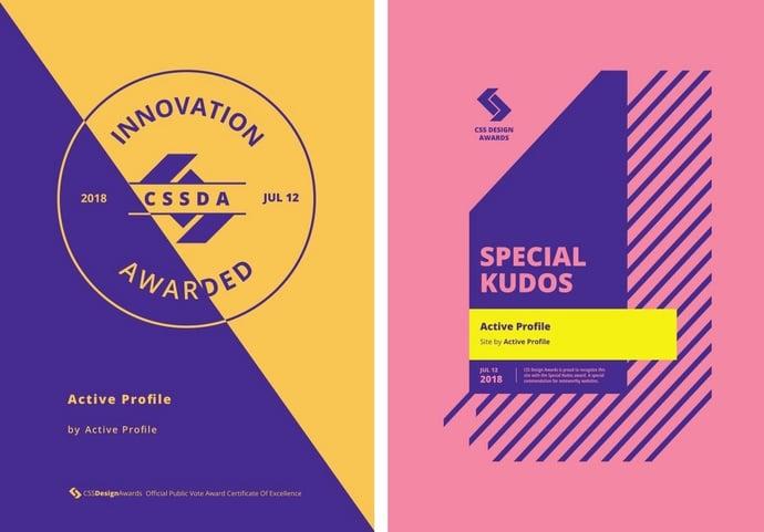 Active Profile website wins design awards