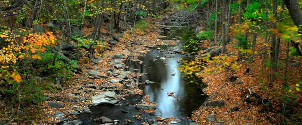 Autumn in the Pocono Mountains