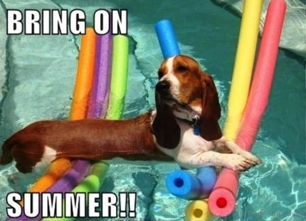 Bring-On-Summer-600x435