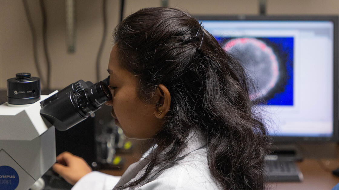 Doctoral student Anyesha Sarkar scans a live epithelial cell