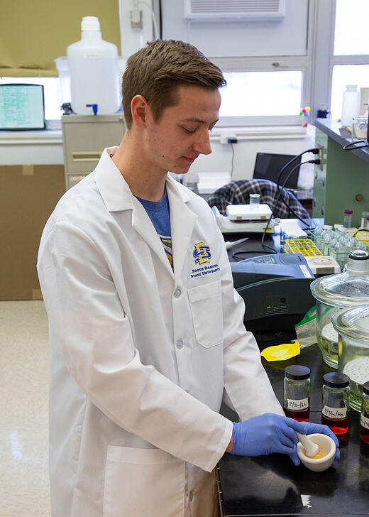 Karl Vallin grinds starch in which curcumin has been encapsulated