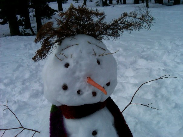 mr. wine country snowman