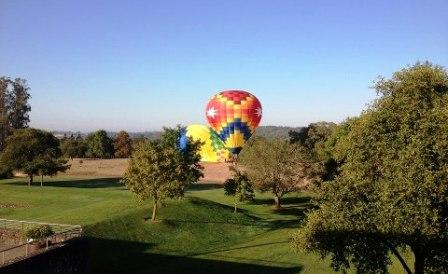 Hot air balloon by winery