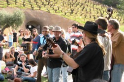 Bella Winery events